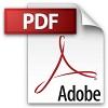 icon-pdf-100.jpg
